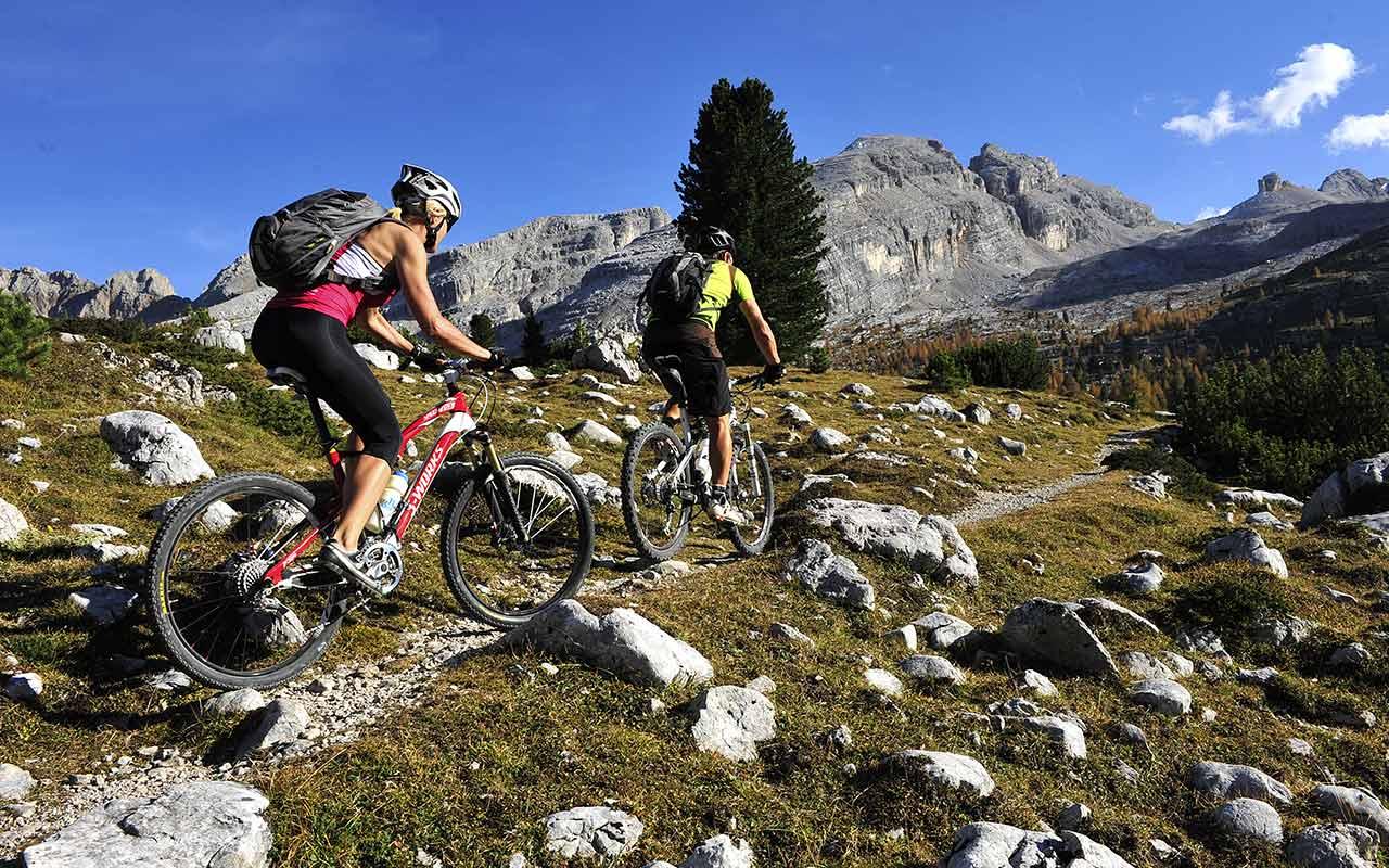 Ejercicio Físico y Memoria - Mountain Bike