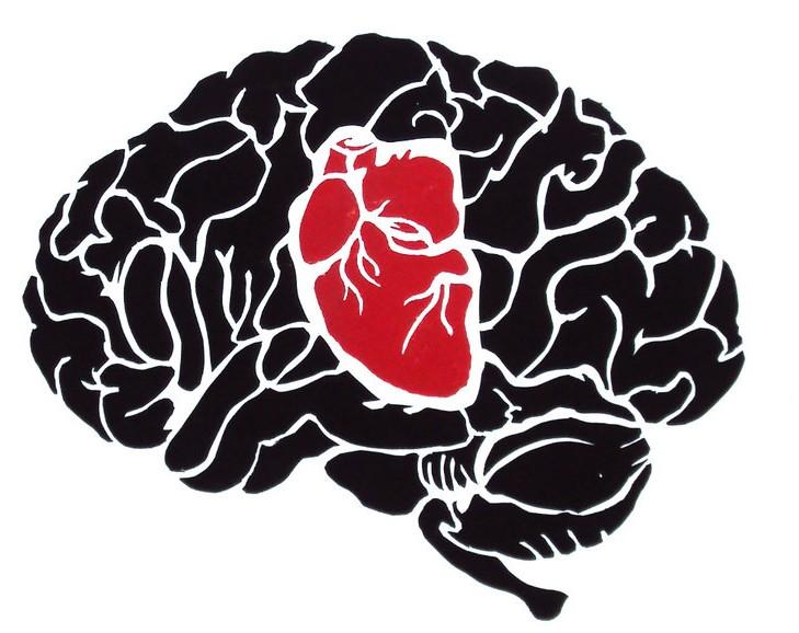 Ejercicio fisico y cerebro - Corazón y Cerebro trabajan juntos